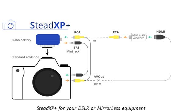 steadyXP+